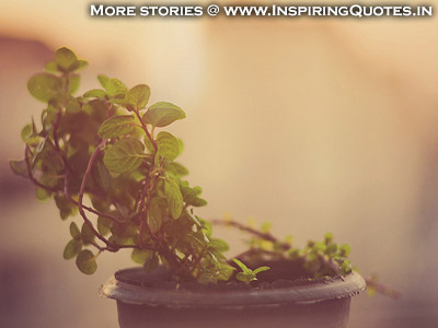 Hindi Inspirational Stories, Motivational Story, Kahani Download, Pictures, Photos, Wallpapers